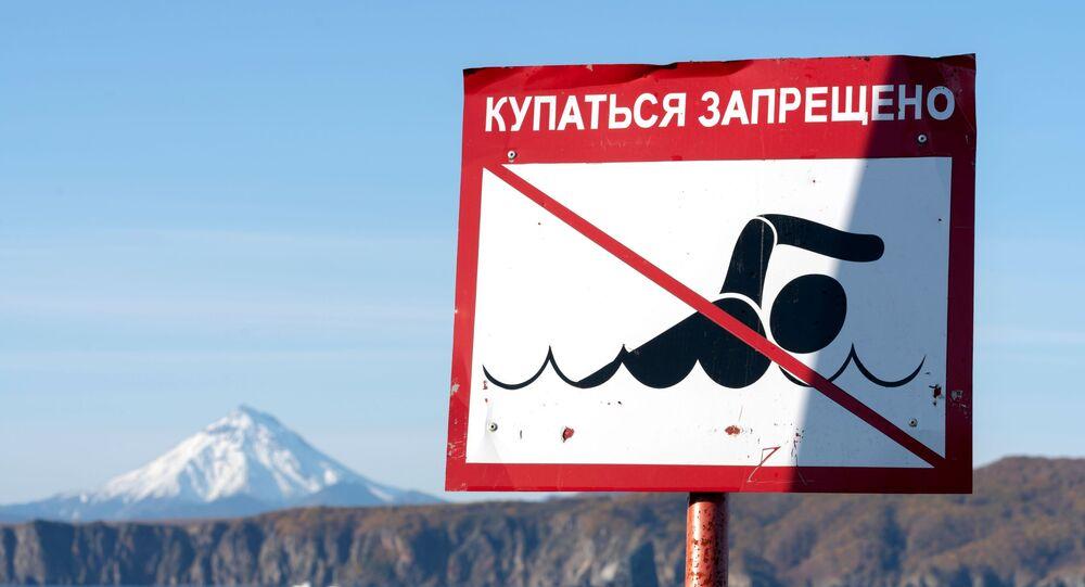 نفوق جماعي للحيوانات - كارثة بيئية على سواحل كامتشاتكا، روسيا 4 أكتوبر 2020