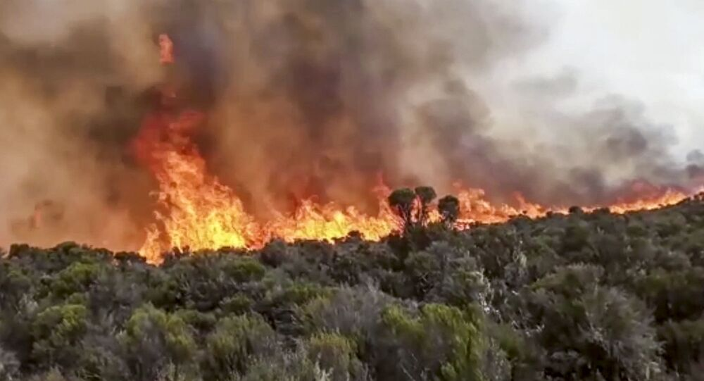 اشتعال حريق على قمة جبل كليمنجارو في تنزانيا، 12 أكتوبر 2020
