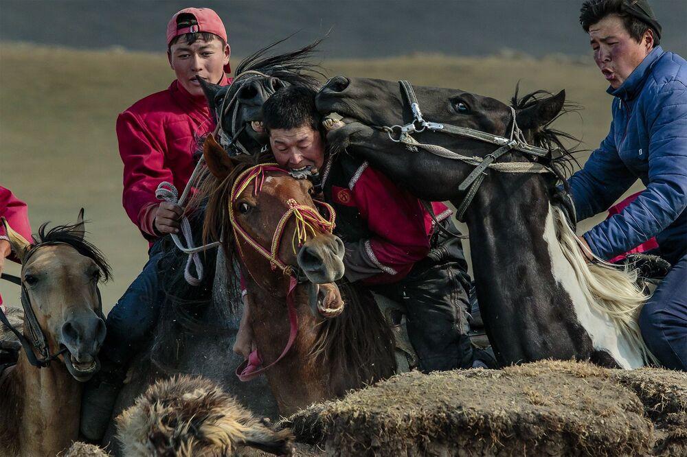 صورة بعنوان مسابقة كوك-بورو في قيرغيزستان، للمصور الإيطالي ستيفانو بنسوتي، التي فازت بالمركز الأول في فئة الحدث/ حدث تنافسي للمصورين المحترفين في مسابقة جوائز التصوير الدولية 2020