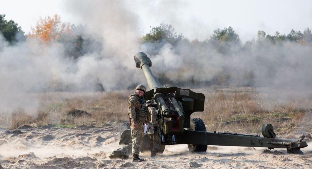 مناورات الجيش الأوكراني في إقليم كييفسكايا، مدفع هاوتزر دي - 20، أوكرانيا