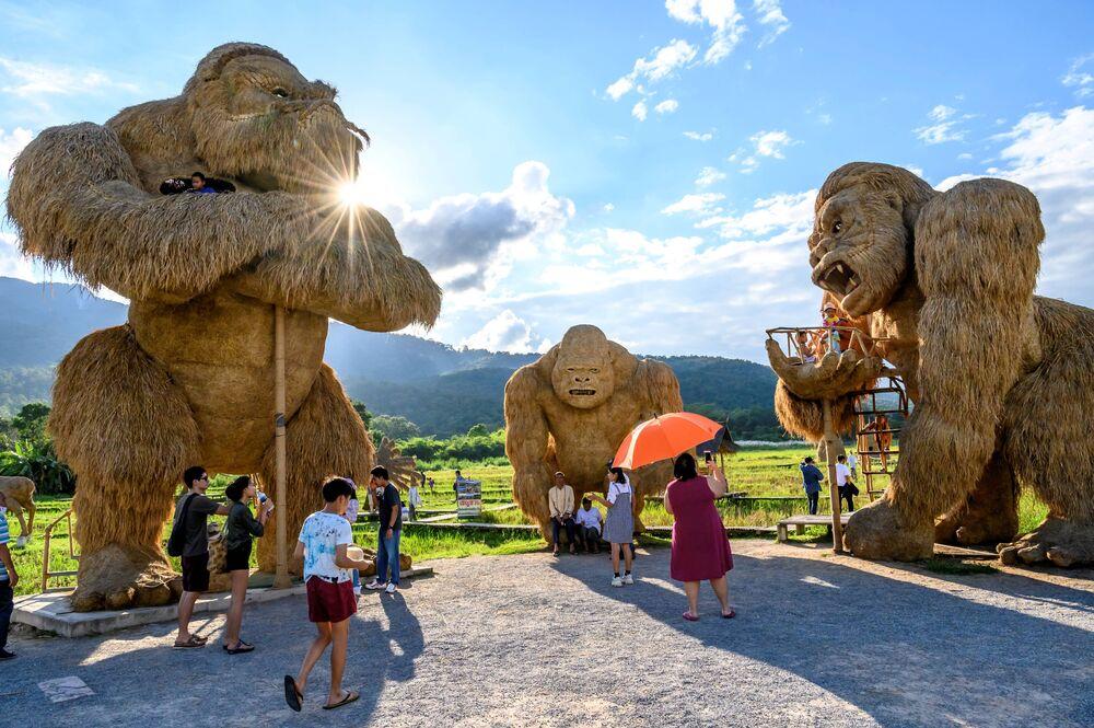 زوار يلتقطون صورا بجوار منحوتات للحيوانات صنعت بالكامل من  قش الأرز في حديقة ترفيهية المطلة على بحيرة هواي توينغ تاو، بالقرب من مدينة تشيانغمى، تايلاند 1 نوفمبر 2020