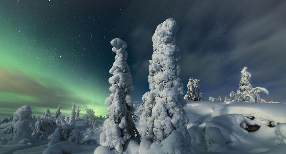صورة بعنوان الغابة الشمالية، للمصور الصيني جيو زياو، الذي دخل ضمن ترشيحات أفضل صور نوب 101 من المسابقة الدولية لمصور المناظر الطبيعية لعام 2020