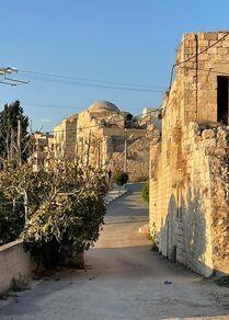 قصور كور التاريخية، فلسطين