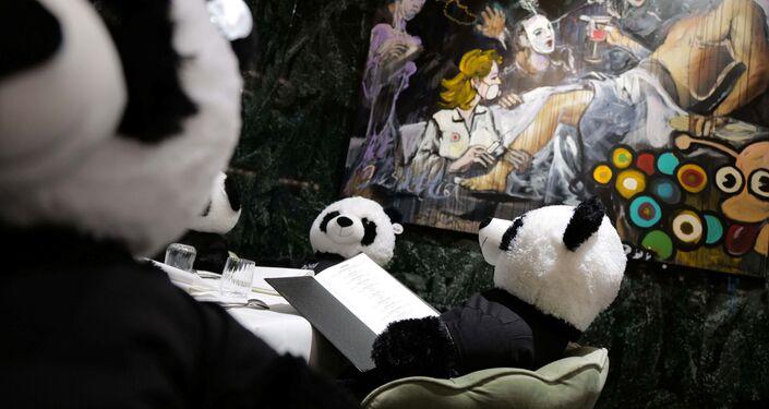 مطعم إيطالي «بينوس» يستخدم ألعاب دب الباندا بدلا من زبائنها، لنشر الوعي حول تأثير الأغلاق العام على ا مطاعم ومقاهي ألمانيا بسبب وباء كورونا، فرانكفورت، 24 نوفمبر 2020