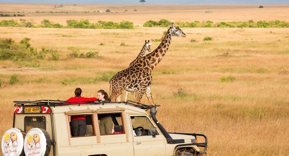 محمية ماساي-مارا الوطنية في كينيا، تفوز بلقب أفضل وجهة سفاري في العالم لعام 2020