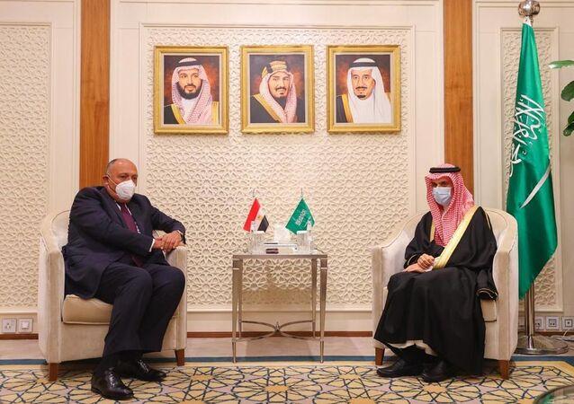 وزير الخارجية السعودي الأمير فيصل بن فرحان آل سعود ونظيره المصري سامح شكري