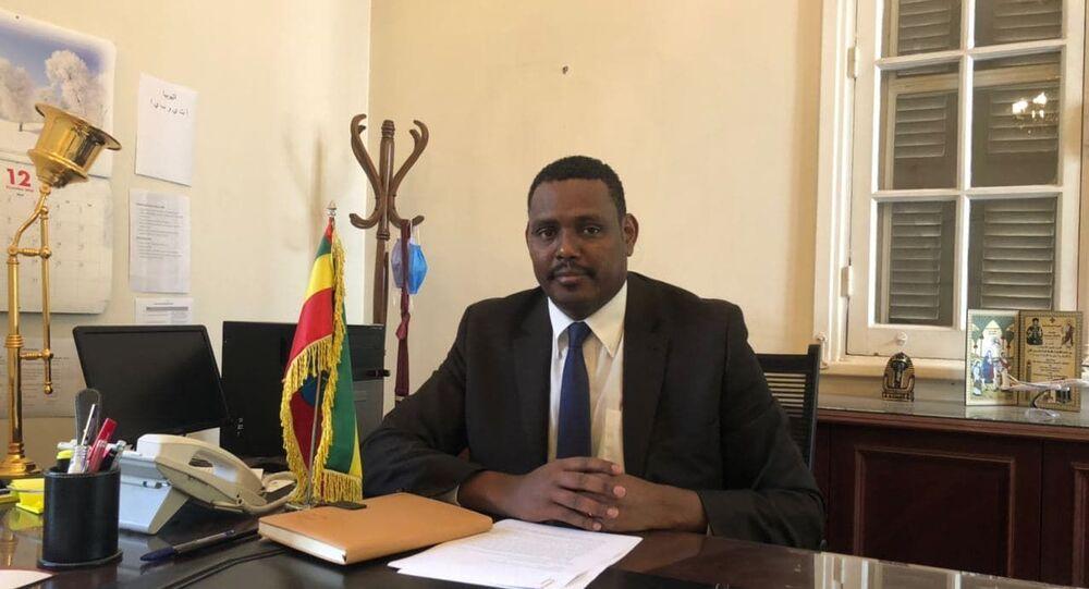 السفير الإثيوبي في القاهرة ماركوس تيكلي