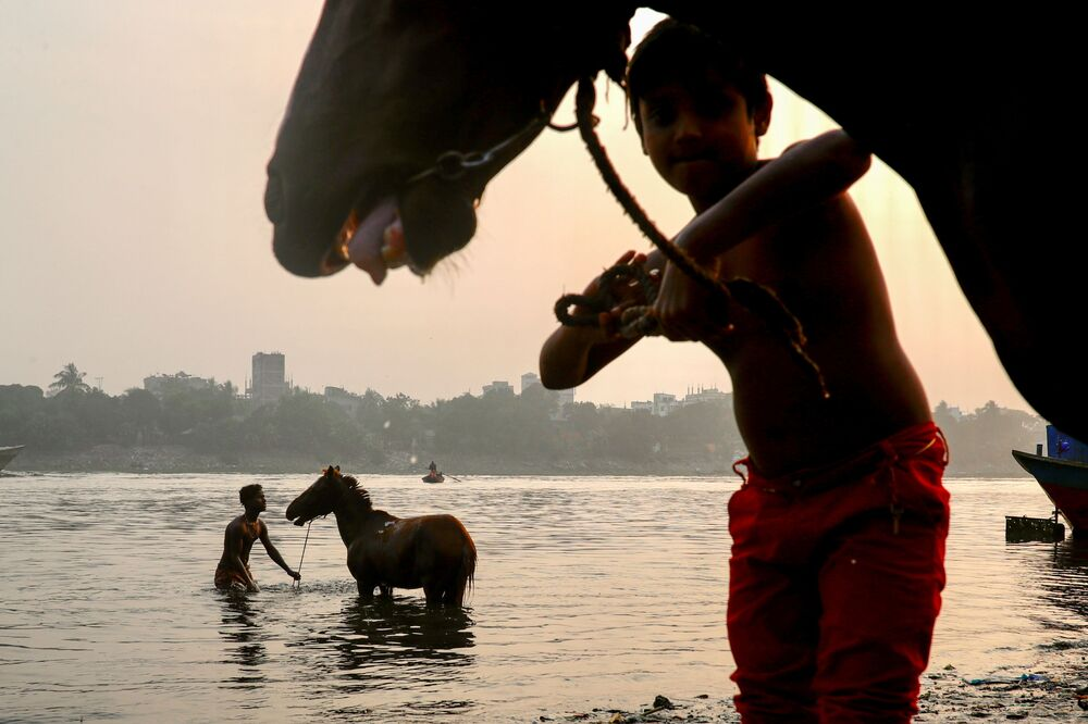 رجل يقوم بغسل حصان في نهر بوريغانغا في دكا، بنغلاديش، 15 ديسمبر 2020