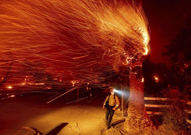 رجل إطفاء يمر بشجرة محترقة أثناء حريق بوند في مجتمع سيلفرادو في مقاطعة أورانج، كاليفورنيا، الولايات المتحدة 3 ديسمبر 2020