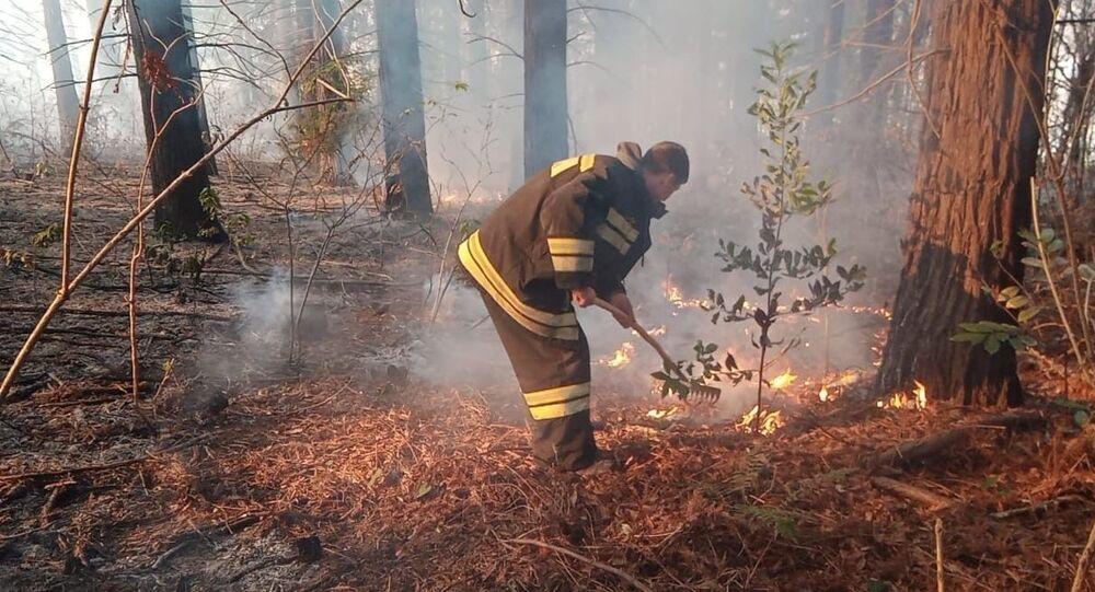 إطفاء الحريق في مدينة سوتشي