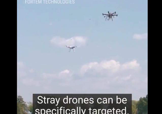 صائدو الطائرات المسيرة تنقض على المركبات الخطرة... فيديو