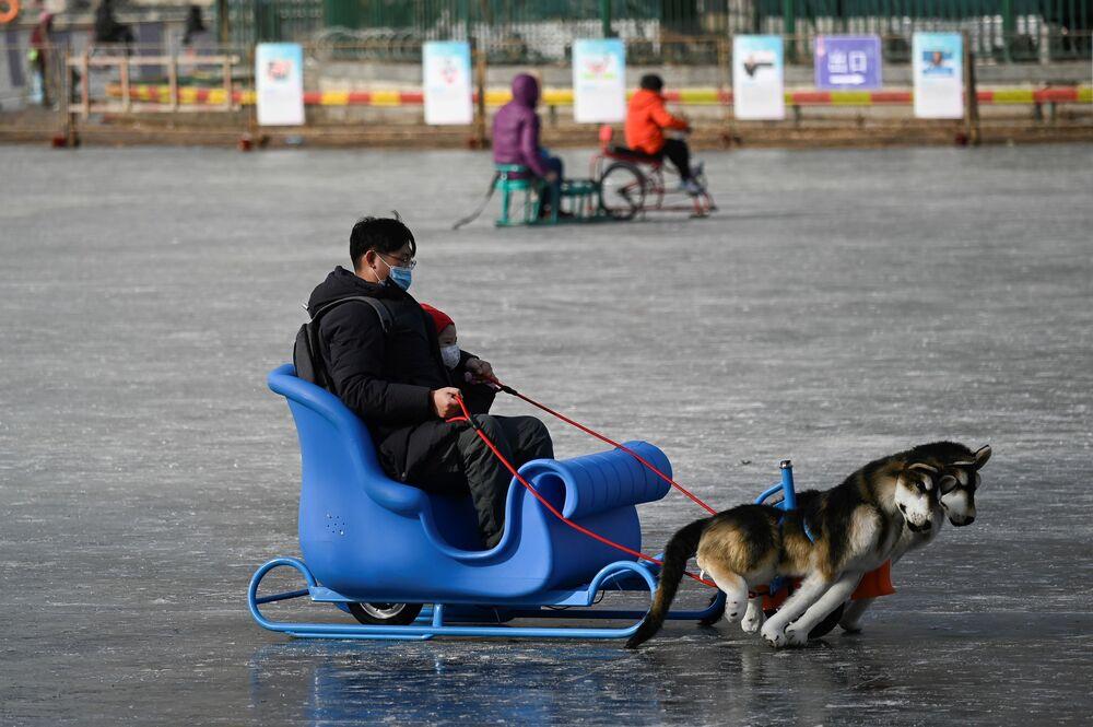 رجل وطفل يستخدمان زلاجة على بحيرة متجمدة في بكين، الصين 12 يناير 2021