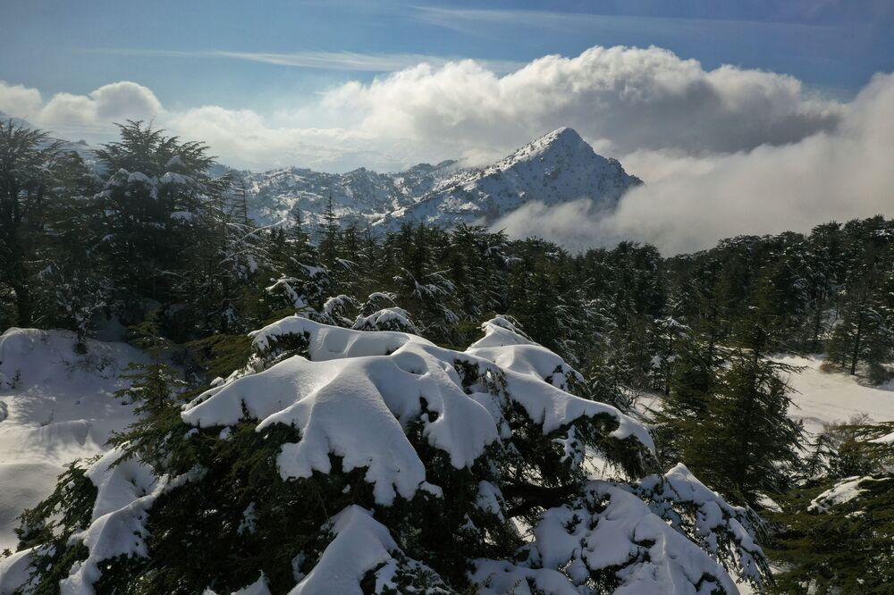 الحقول الزراعية  مغطاة في منطقة تنورين التحتا في الجبال اللبنانية، لبنان 22 يناير2021