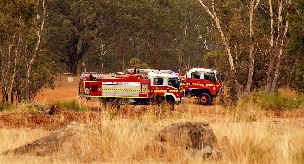 اشتعال حرائق الغابات في أستراليا 2 فبراير 2021
