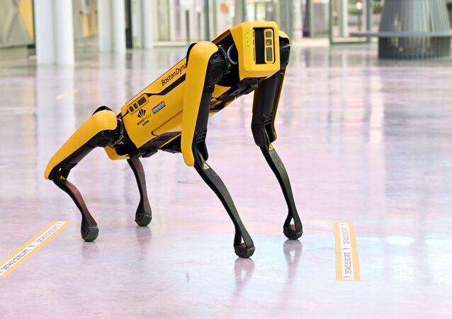 الروبوت الكلب