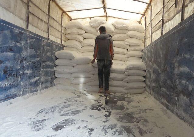 القمح السوري - صورة أرشيفية