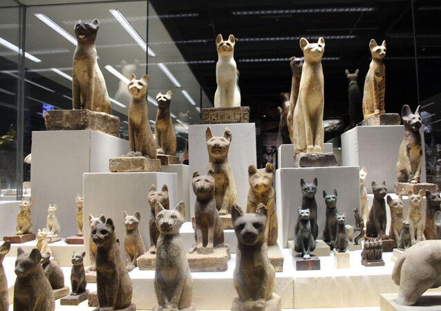 جولة مصورة داخل أول متحف بشرم الشيخ