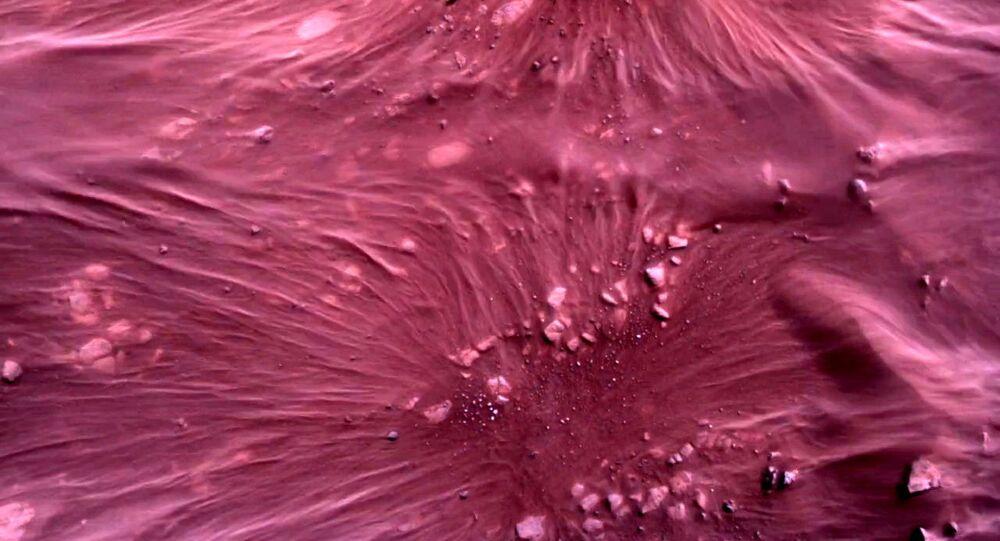 صورة لسطح كوكب المريخ مباشرة أسفل مركبة المركبة المتجولة بيرسيفرانس مارس التابعة لوكالة الفضاء الدولية ناسا، بواسطة كاميرا روفر داون-لوك في صورة تم الحصول عليها في 22 فبراير 2021