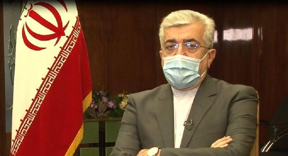 قال وزير الطاقة الإيراني رضا أردكانيان