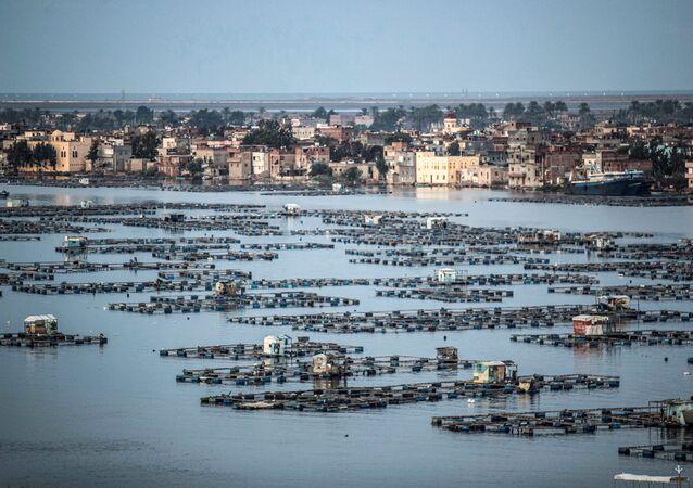 مزارع أسماك في دلتا النيل بمصر