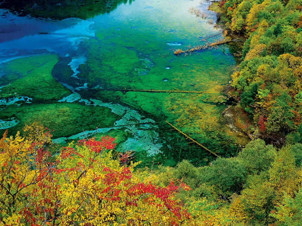 بحيرة الأزهار الخمسة في وداي وادي جيوتشاي، الصين