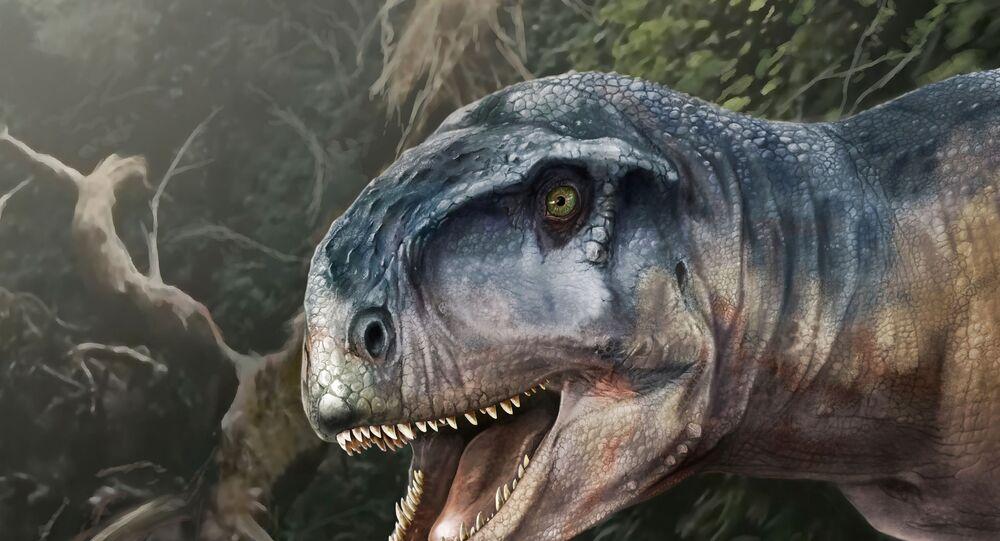 رسم تخيلي للديناصور لوكالكان أليوكرانيانوس الذي كان يأكل اللحوم في العصر الطباشيري وعاش قبل حوالي 80 مليون عاما في منطقة باتاغونيا، الأرجنتين