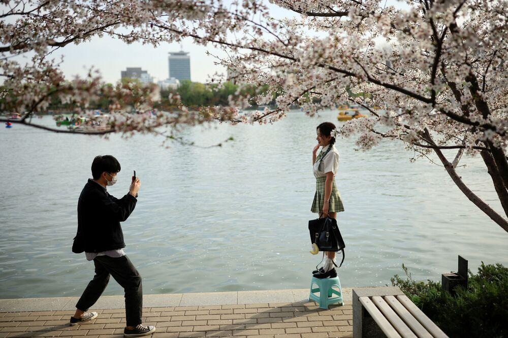 شاب يلتقط صورة لصديقتعه على خلفية تفتح أزهار شجر الكرز الشهيرة في هذا الوقت من العام، بكين، الصين 31 مارس 2021
