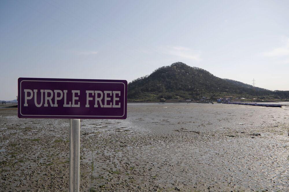 مؤشر إلى مكان الجزر البنفجسية في محافظة تشلا الجنوبية في كوريا الجنوبية، 6 أبريل 2021