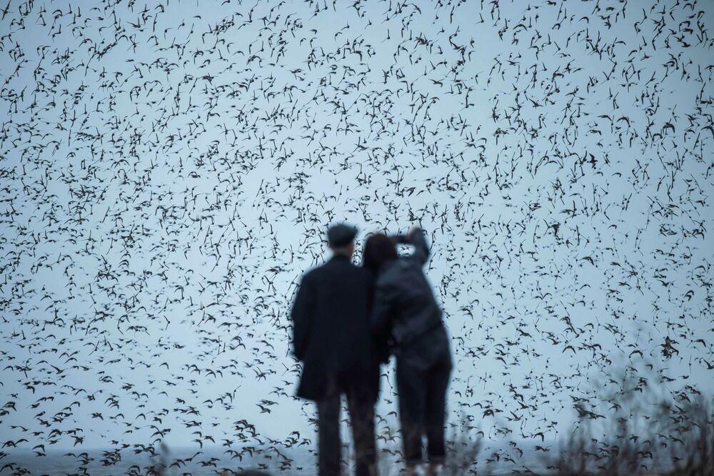 تُظهر هذه الصورة التي التقطت في 4 أبريل 2021 أشخاصًا يشاهدون الطيور المهاجرةЛ في أرض رطبة بالقرب من نهر يالو في داندونغ بمقاطعة لياونينغ، شمال شرق الصين 3 أبريل 2021