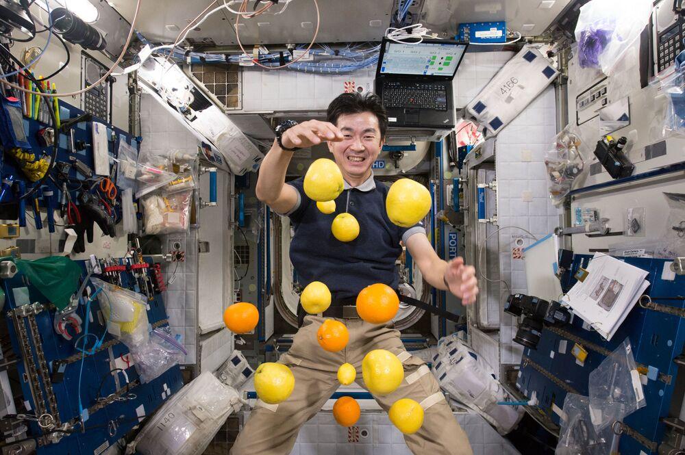 رائد الفضاء اليابانية كيميا يوي بصدد جمع الفاكهة المتناثرة في الهواء على متن محطة الفضاء الدولية