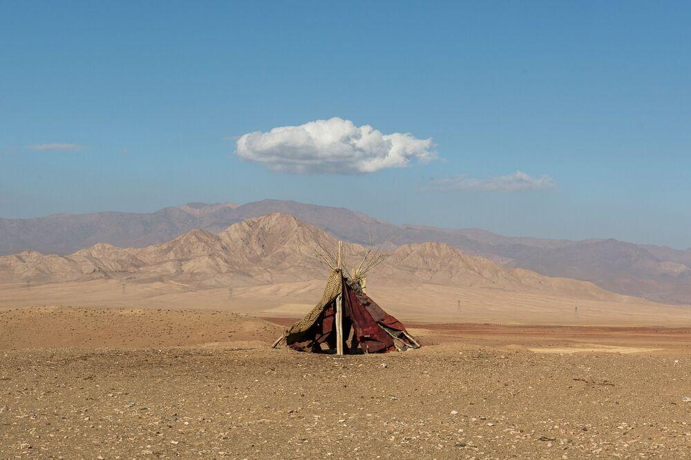 صورة من سلسلة الأحياء الصامتة، للمصور الإيراني ماجد هوجاتي، الفائزة في فئة الطبيعة المحترفة في مسابقة جوائز سوني العالمية للتصوير الفوتوغرافي 2021