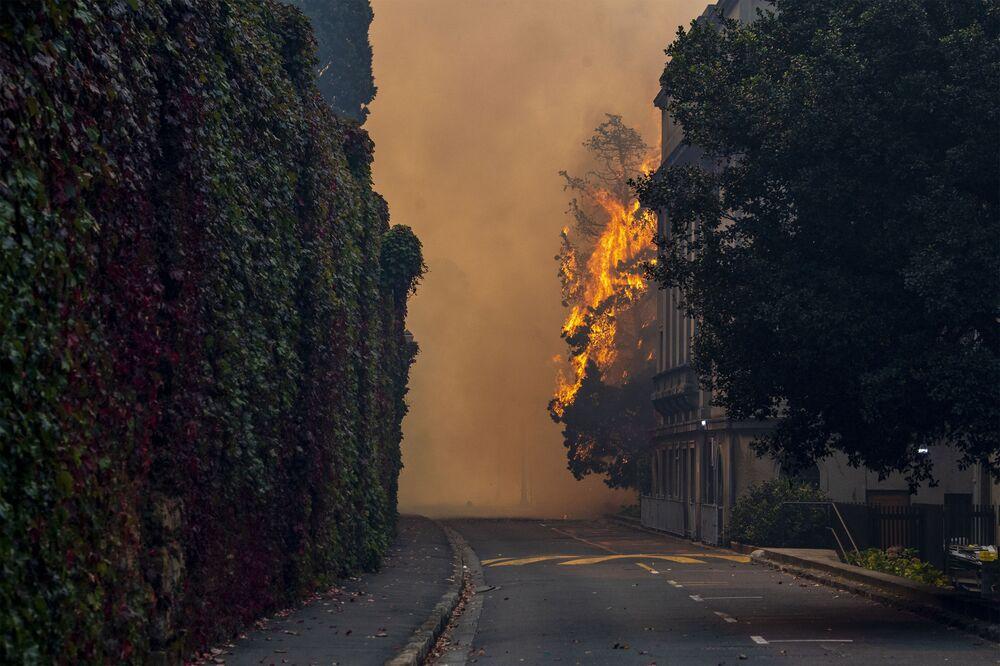 حريق هائل نشب في جبل تيبل في كيب تاون، جنوب أفريقيا 19 أبريل2021
