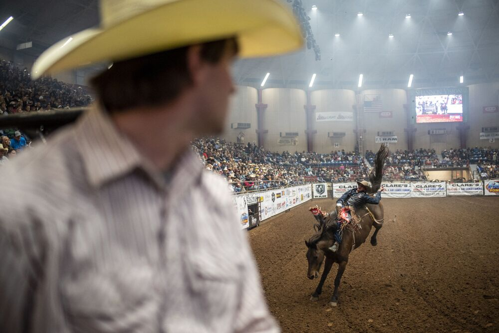 عرض ترويض الخيول البرية في روديو في سان أنغيلو، تكساس 16 أبريل 2021