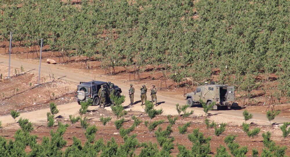 تظاهرة اللبنانيين على الحدود اللبنانية مع إسرائيل، لبنان 16 مايو 2021
