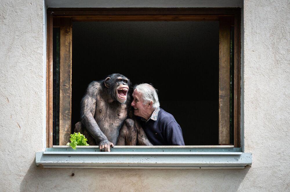 يضحك مالك حديقة الحيوانات بيير ثيفيلون بجوار شمبانزي في 17 مايو 2021 ، في حديقة الحيوان في سان مارتن لا بلين، قبل يومين من إعادة افتتاحها كجزء من أحدث خطوة فرنسا نحو إنهاء الموجة الثاثة من تفشي كوفيد-19.