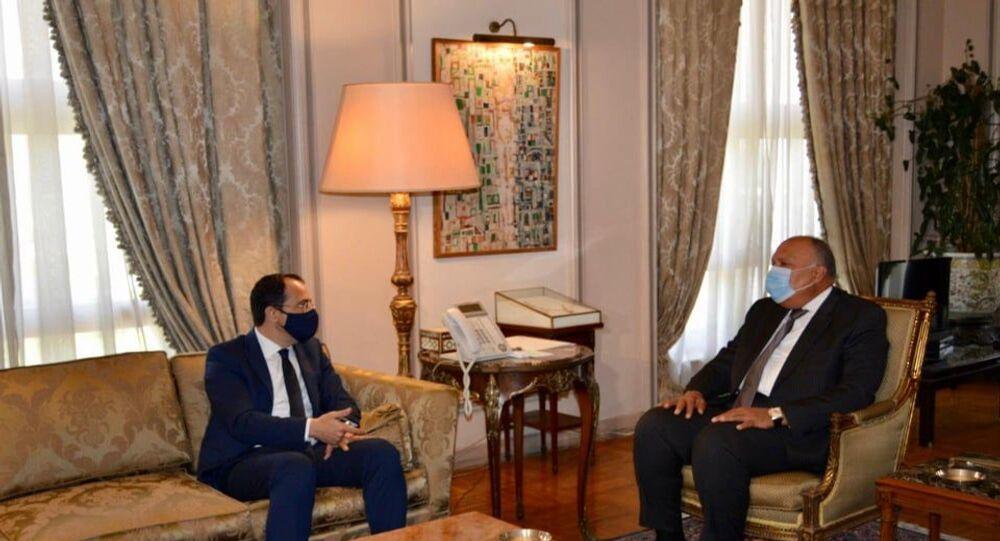 وزير الخارجية المصري يستقبل نظيره القبرصي