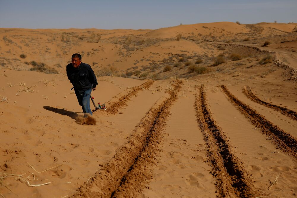 وانغ ينجي، 53 عامًا، يحرث الأرض قبل زرع القش لمنع حركة الرمال، وهي آلية زراعية تُعرف باسم منع زحف الرمال، خلال حدث طوعي لزراعة الأشجار نظمته عائلة ينجي، على حافة صحراء غوبي في ضواحي وووي، مقاطعة غانسو، الصين، 16 أبريل 2021
