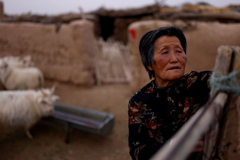 راعية دينغ ينهوا، 69 عامًا ، تفتح بوابة حظيرة للأغنام والماعز في منزلها في صحراء غوبي في مقاطعة مينكين، وووي، مقاطعة غانسو، الصين، 18 أبريل 2021