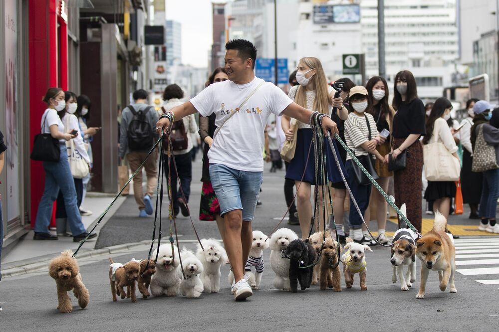 الشاب الياباني نوبواكي موريبي، hgمحترف في اخراج الكلاب في نزهة، حيواناته الأليفة عبر تقاطع طرق في طوكيو، اليابان 28 مايو 2021