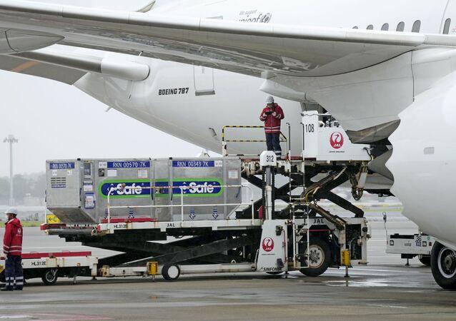 نقل حاويات تحتوي على لقاحات ضد فيروس كورونا المستجد من اليابان إلى تايوان