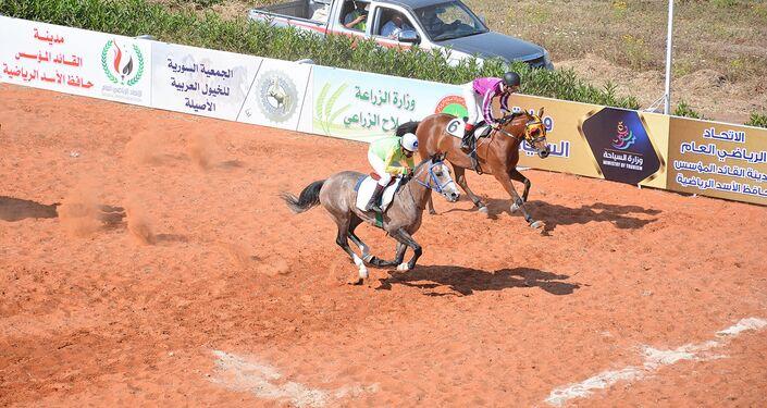صور من مسابقة الخيول العربية الأصيلة في سوريا في اللاذقية