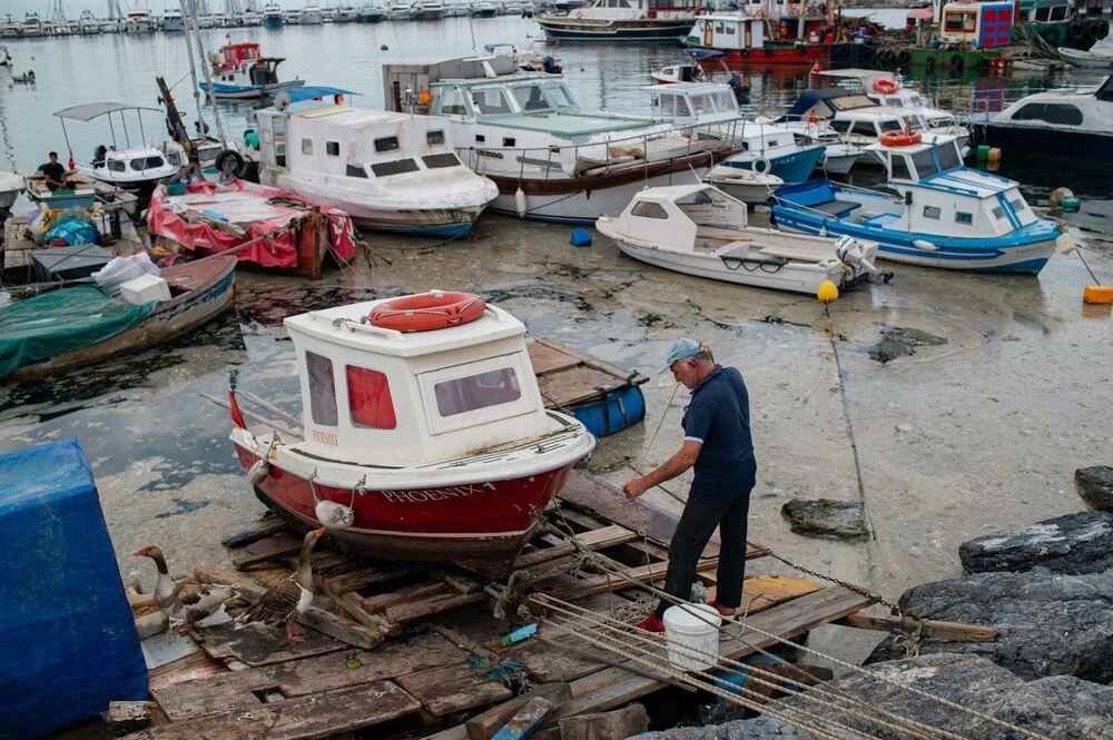 لعاب بحر مرمرة في اسطنبول، تركيا 4 يونيو 2021