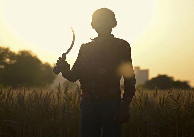 عمالة الأطفال في العالم تسجل زيادة كبيرة خلال الفترة من 2016 حتى 2020