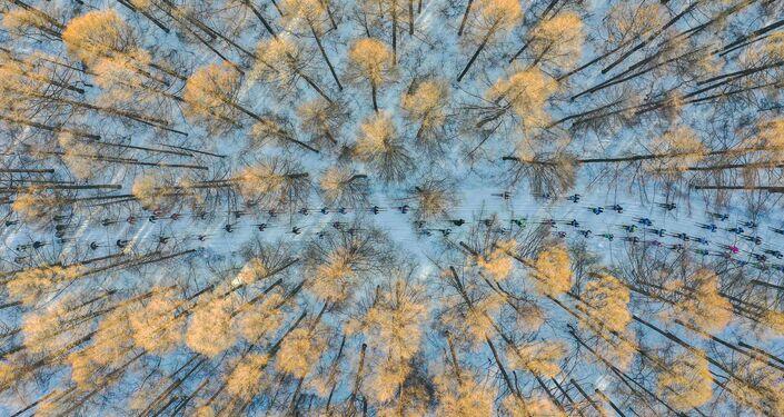 صورة التزلج باتجاه الربيع  للمصور تشان تسون