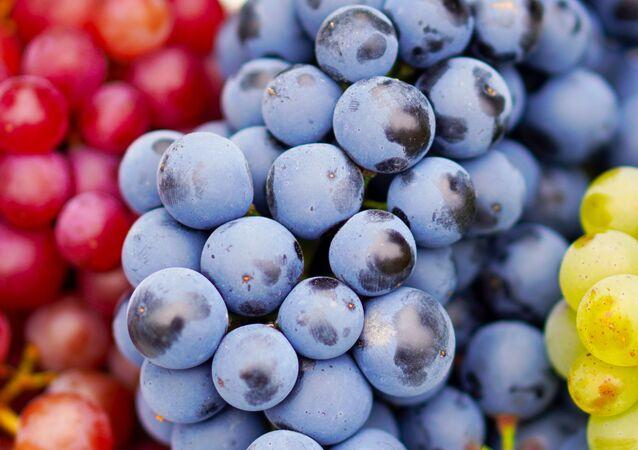 عناقيد من العنب