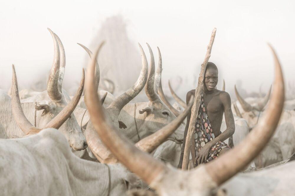 صورة بعنوان راعي الماشية منداري (جنوب السودان)، للمصور السويسري جوزيف بورغي، الفائز في فئة بورتريه بيئي، من مسابقة التصوير الدولية أفضل مصور البورتريه للعام 2021
