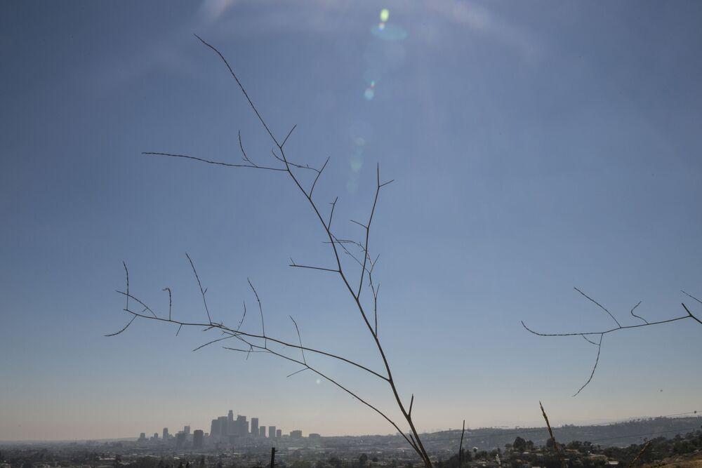 الجفاف في لوس أنجلوس