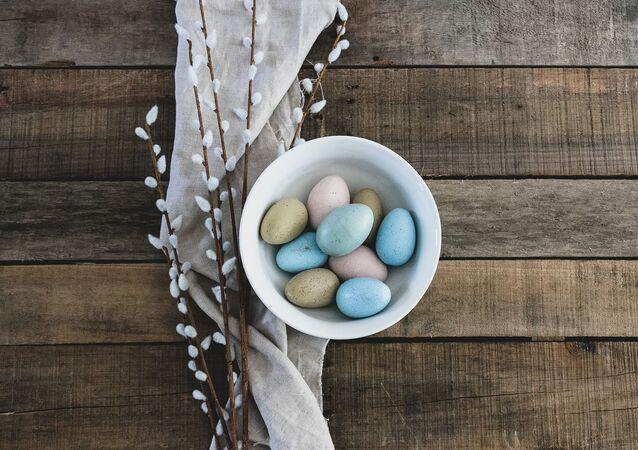بيض طيور