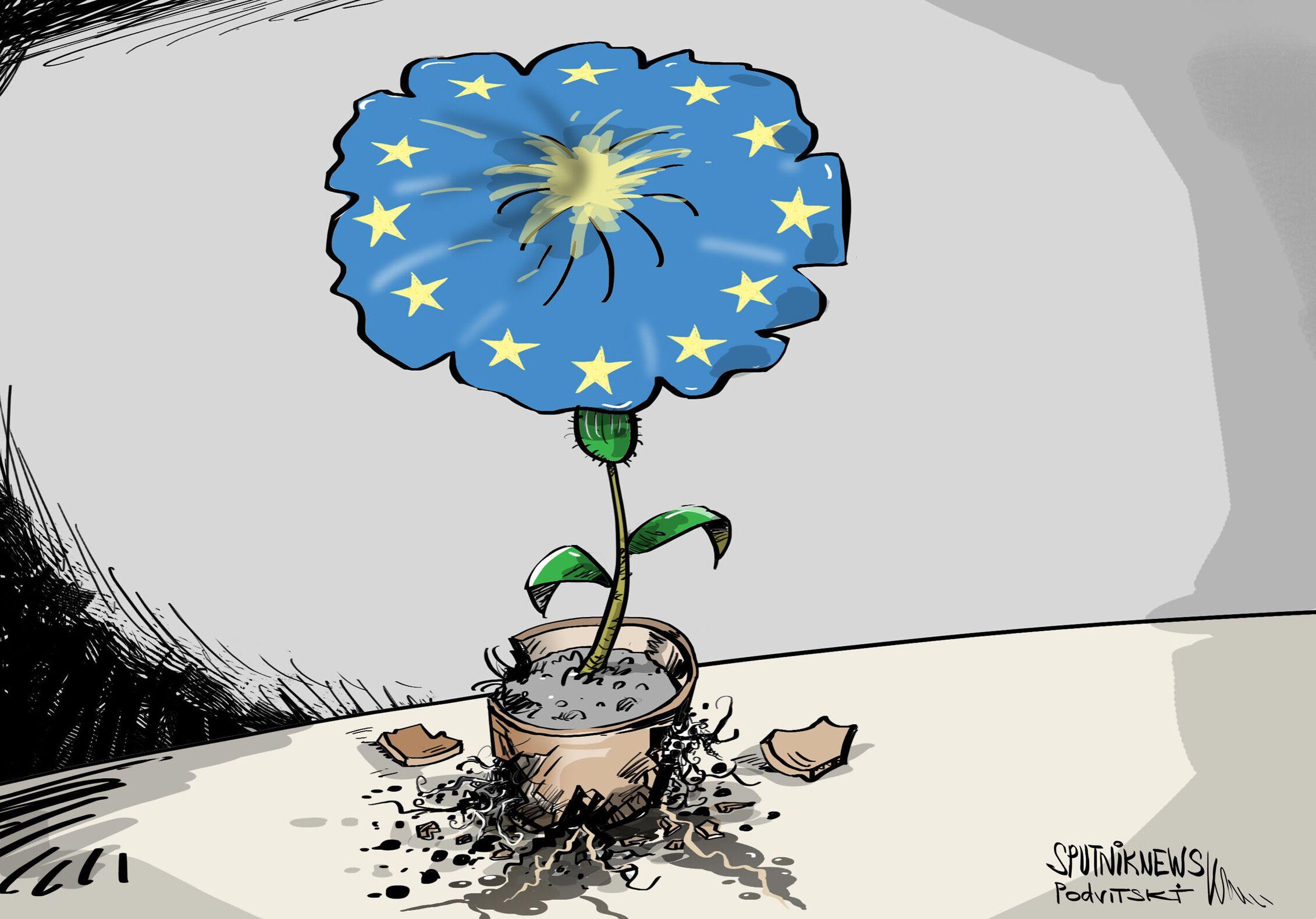 الاتحاد الأوروبي قد يضعف بسبب تصرفات عدد من الدول الأعضاء