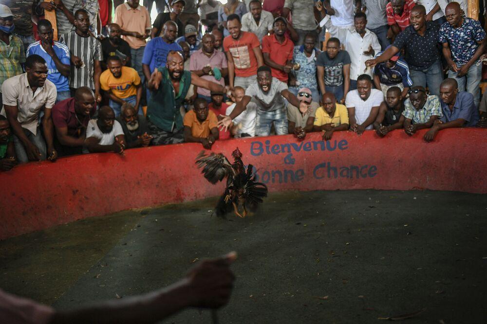 فنادي مصارعة الديوك Anbalakay kay kano في حي بوا موكيت في بورت أو برنس، هايتي، 18 يوليو 2021